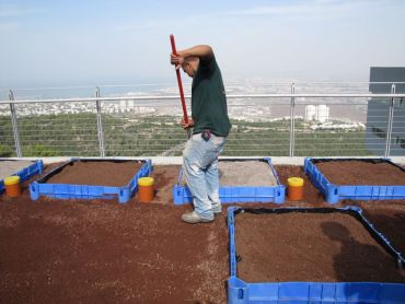 A Dedicated Green Roof Research Center Opens in Israel