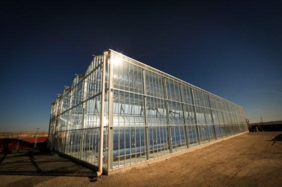 GlassPoint Solar, Greenhouse, CSP, solar energy, oil, Oman, clean tech
