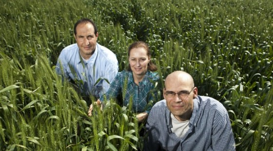 morflora team plant vaccine