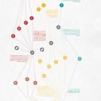Dina_Alwani_MWTF_AltCity_infographic-birds-small