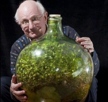 50 Year Old Record-Busting Bottled Terrarium – And It's Not from Dubai!
