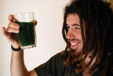 Grow Spirulina Superfood Algae at Home With A DIY Kit