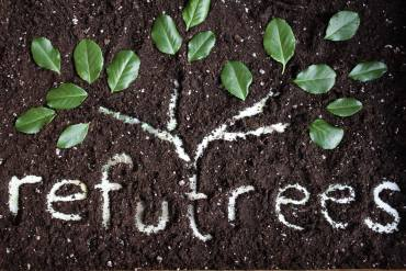 Refutrees Scratches Eco and Social Itches with Refugee Projects