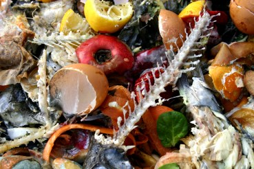 Abu Dhabi Imams Dish Out Sermons on Food Waste