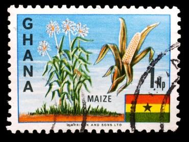 Abu Dhabi Social Responsibility Firm Plans Organic Farm in Ghana