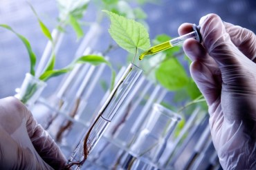 """Israel's Genetically Modified """"Superplants"""" Thrive in Arid Areas"""