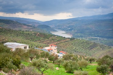 Galilee to Dead Sea: Jordan Valley's first-ever regional master plan!