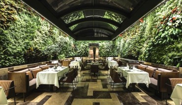 Wraparound wall of plants livens up Istanbul's bespoke Nopa restaurant