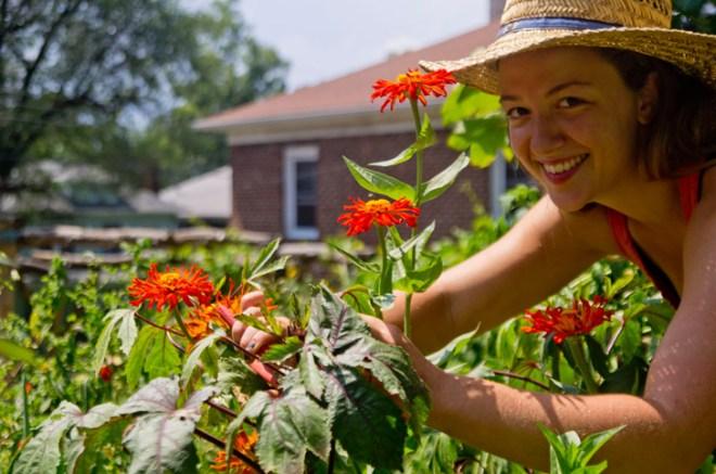 Urban Farm School teaches you how to grow food in your city.