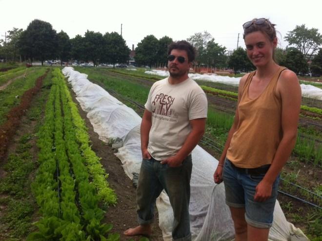 fresh-city-farm-toronto
