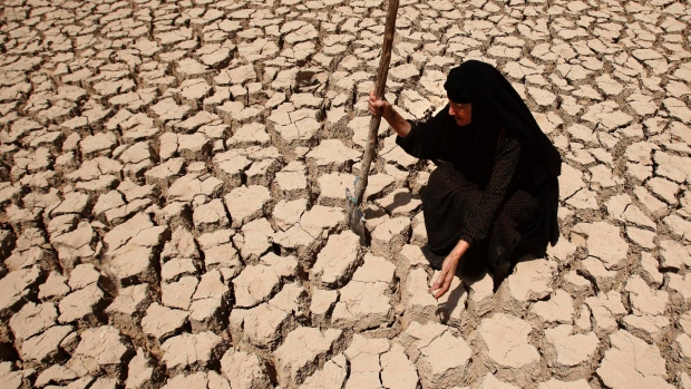 Climate change disasters doubled – eating up world's food security
