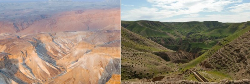 Judean desert goes spectacularly green in wake of winter storms (PHOTOS)