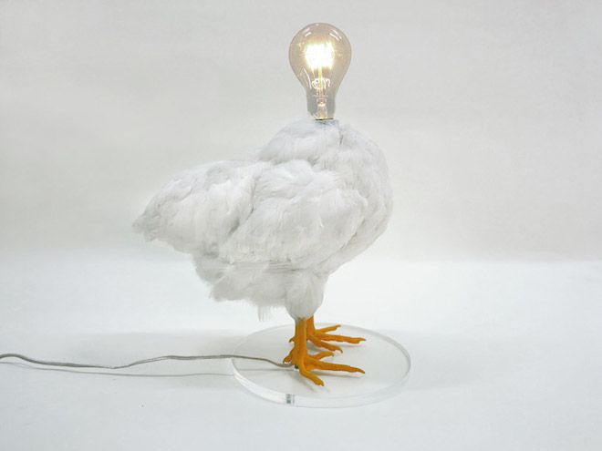 Radical recycling: a chicken is now a lamp
