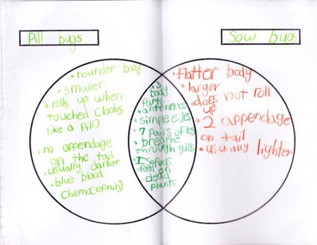 Green Ribbon Schools Green Ribbon Schools \u2014 Activity Detail