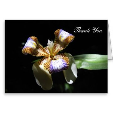 Easy Funeral Thank You Notes - Written from the Heart - funeral thank you note