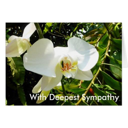 Bulk Sympathy Cards - Wholesale - Customisable High Quality