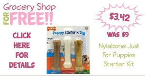 Nylabone Just For Puppies Starter Kit Only $3.42! (Reg. $9)