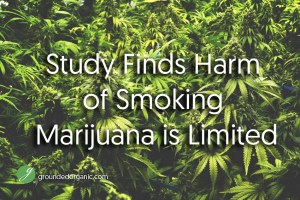 Study Finds Harm of Smoking Marijuana is Limited