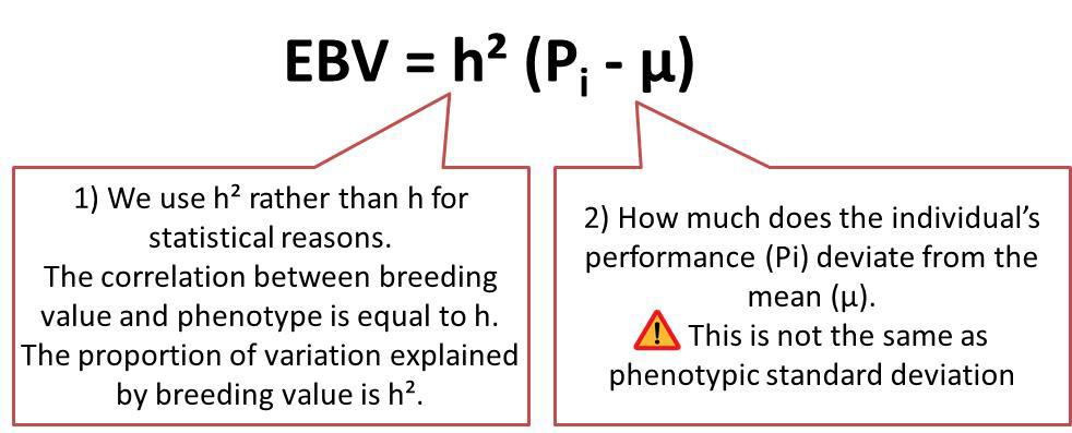 Genetics of dairy production - Genetic evaluation Estimated