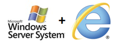 Windows Server and Internet Explorer 9 Logo