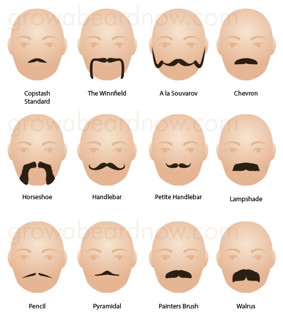 A collection of the most popular moustache styles.