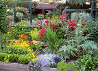 The Real Rock Stars of Food and Gardening - Growing A ...