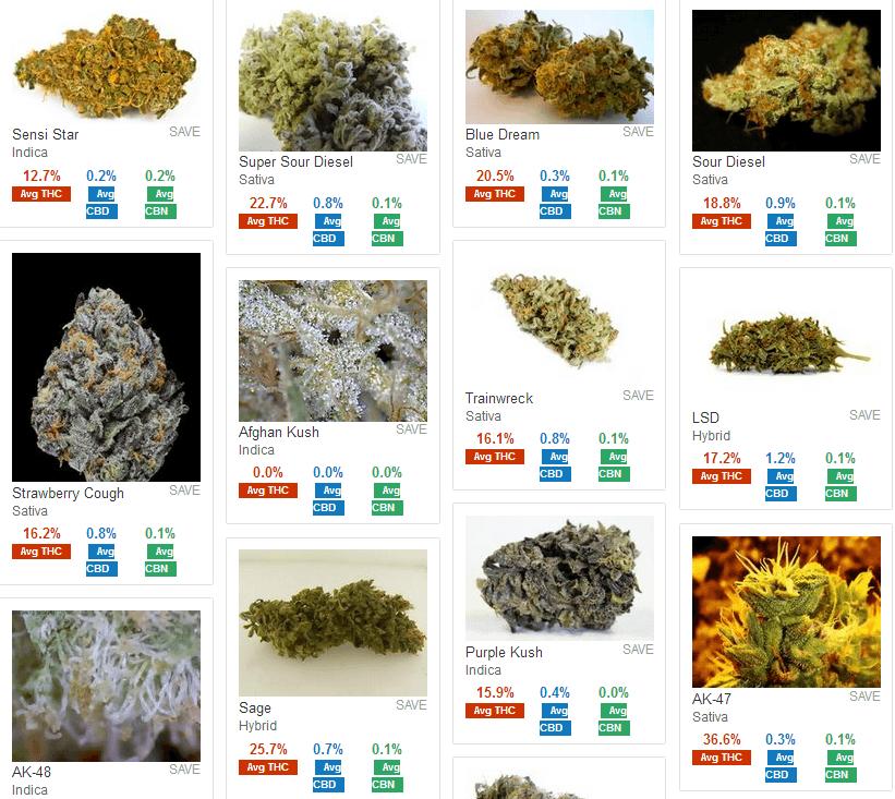 10 Best Types Of Marijuana And Their Effects | Growing Marijuana Blog