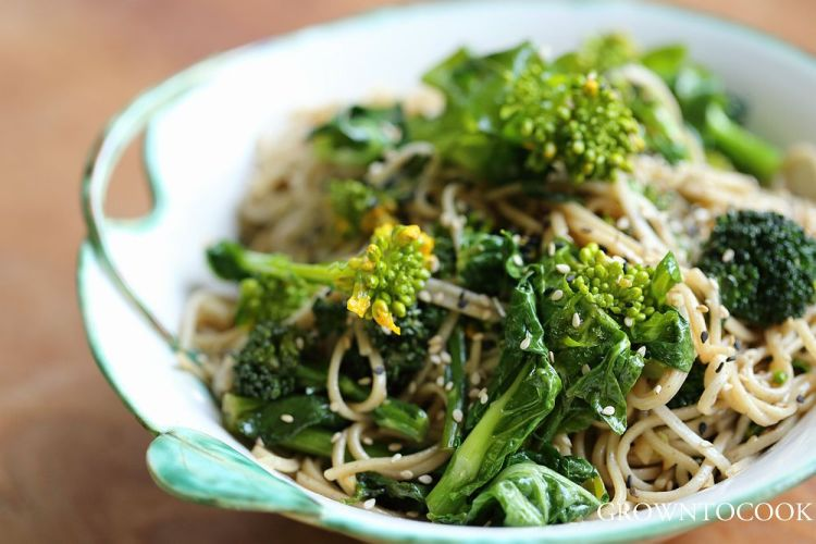 noodle bowl with cabbage shoots and broccoli florets
