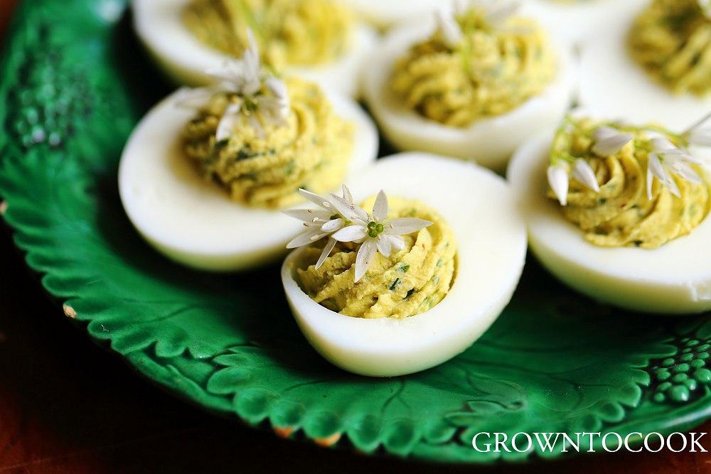 Wild Garlic vs Wild Onion Deviled Eggs With Wild Garlic