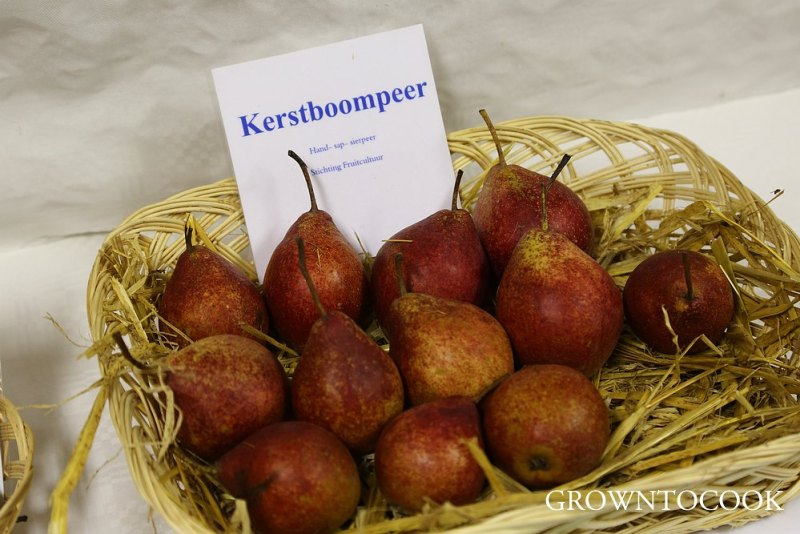 Poached pears with saffron and cardamom – grown to cook