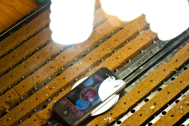 Large Of Light Meter App