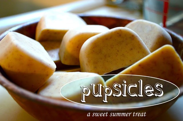 DIY: Pupsicles [for your pup!]