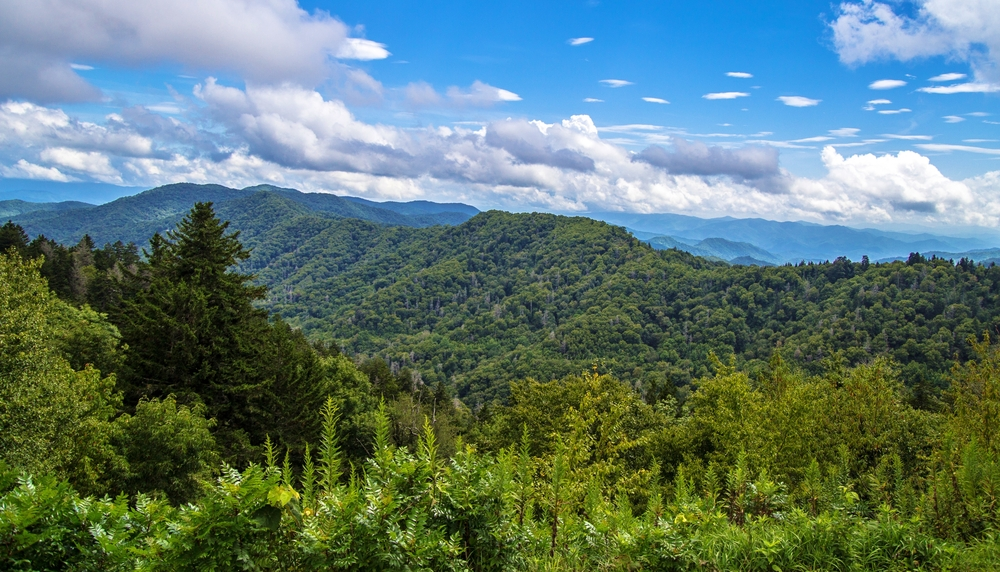 Fall In The Smokies Wallpaper What Smoky Mountains Weather Should You Expect During Your