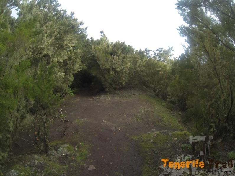 Zona de Pico del Inglés, cuatro caminos