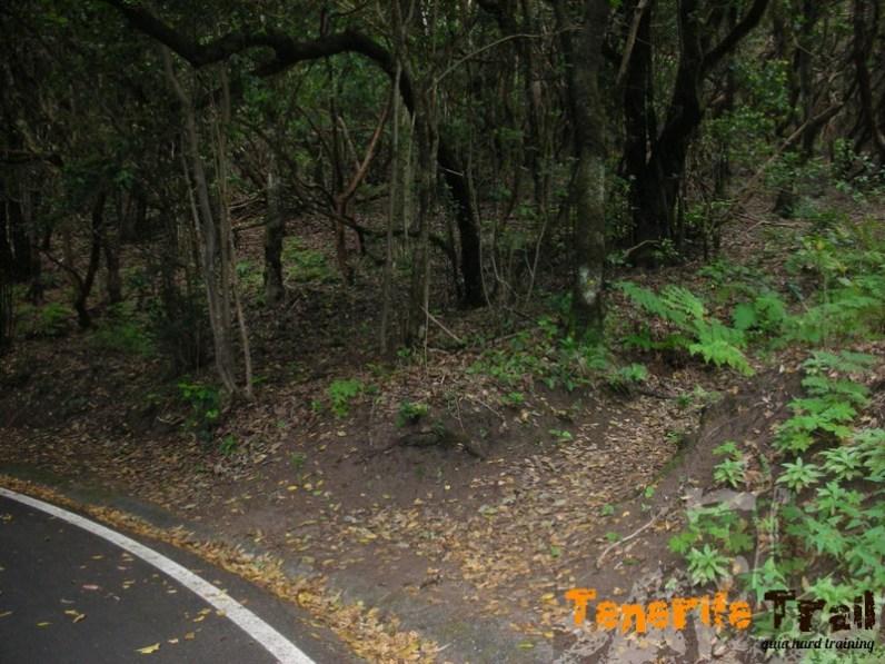 Punto crítico donde desde la carretera vuelves al sendero