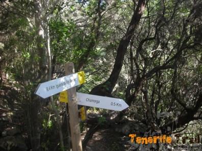 Desvío a Chamorga en el PR 5
