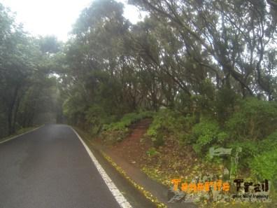 Carretera de la Cumbre entrada del PR 3 de nuevo