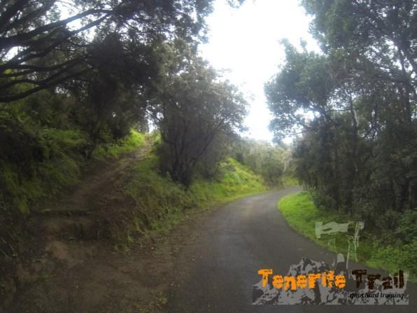 El sendero que ves a tu izquierda que viene de Afur destino Casas de la Cumbre