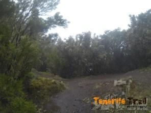 Zona Pico del Inglés (Cuatro Caminos)