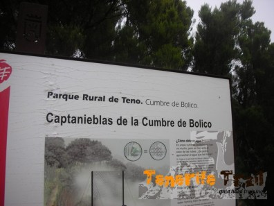 Los Captanieblas de la Cumbre de Bolico