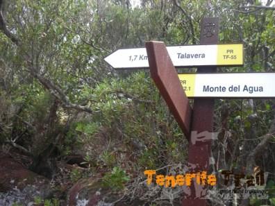 otro detalle del Pr 55 cerca de Talavera