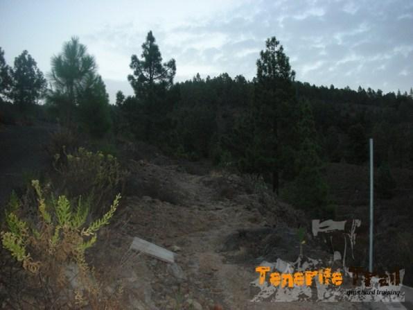 Detalle en el sendero cerca a la salida Tijoco
