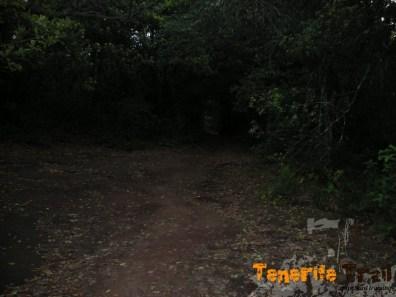 Desde la carretera acceso de nuevo al sendero
