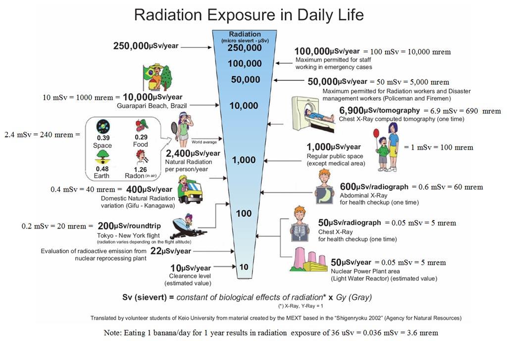 Fukushima What Dose of Radiation Did Tokyo Inhabitants Really