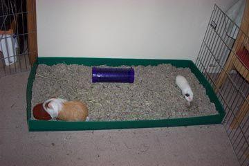 Plastic Flooring For Dog Cagesshor Line Raised Pvc Coated