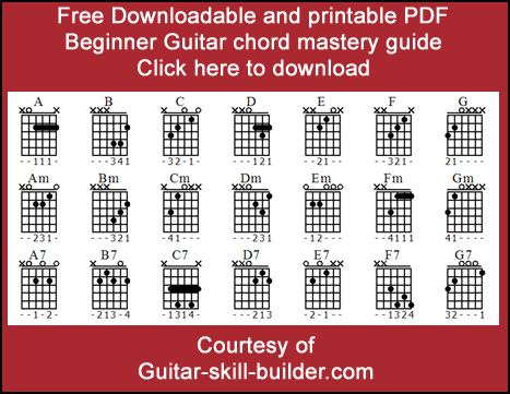 Beginner guitar chords - Basic guitar chords that everyone uses