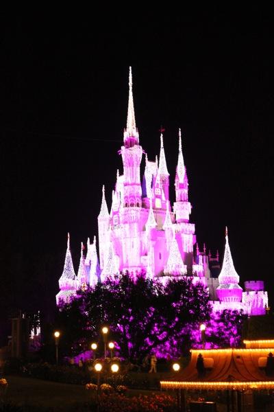 Castle in Lights