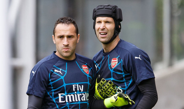 Cech better suited to combat and aerial threat