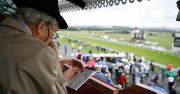 exotic wager calculator for horse racing bets for dummies