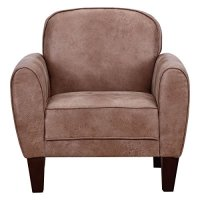 Sofa Leisure Arm Chair Single Accent Upholstered Living ...
